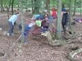 Alltag im Wald