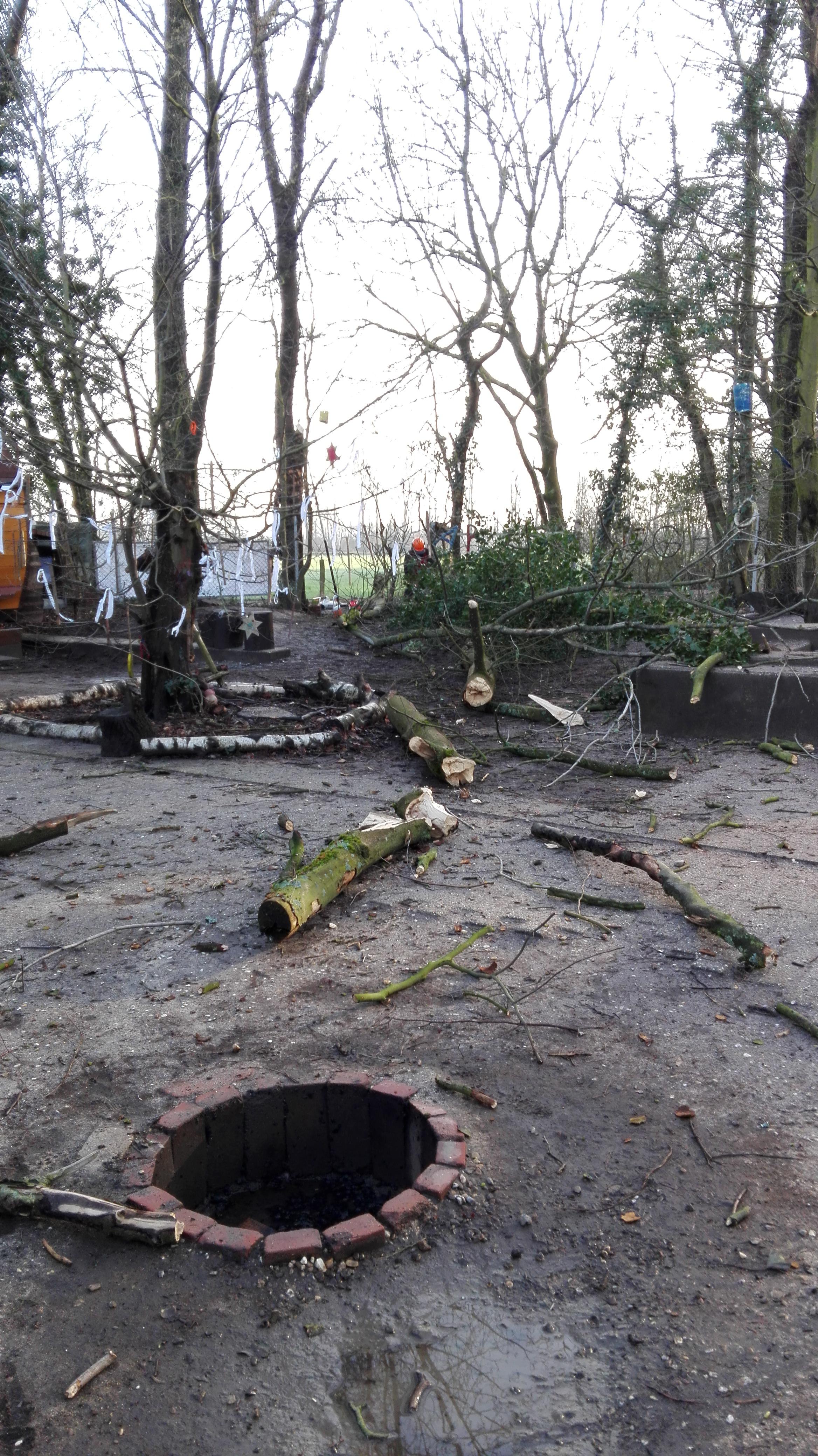Bäume fallen auf dem Bauwagenplatz
